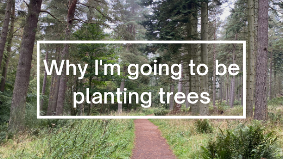 Why I'm going to be planting trees | Steve Bonthrone Fitness